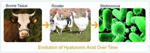 hyaluronic-acid-3